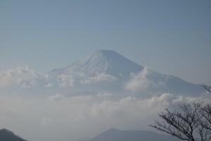 丹沢山からみた富士山