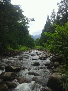 福島西会津の渓