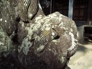 写真②-2佐賀の狛犬には珍しい、横に流れて垂れる装飾的な尾