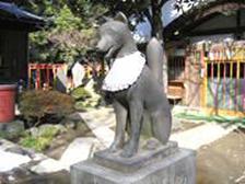 写真③ 「三圍神社」のキツネ
